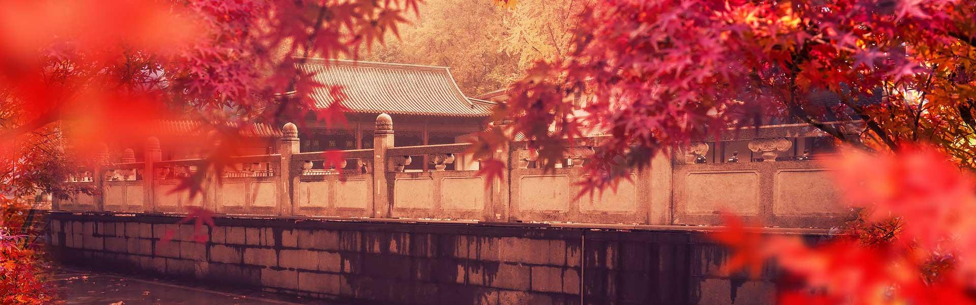 https://www.gonanjingchina.com/sites/default/files/fall-in-love-with-nanjing-autumn-in-nanjing-01_0.jpg