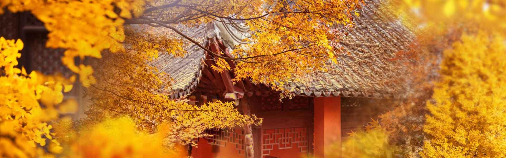 https://www.gonanjingchina.com/sites/default/files/fall-in-love-with-nanjing-autumn-in-nanjing-03.jpg
