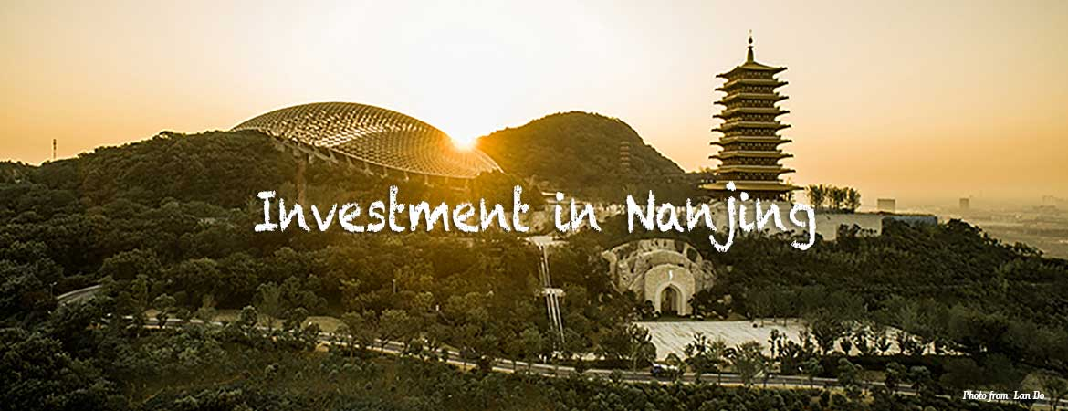 Investment in Nanjing