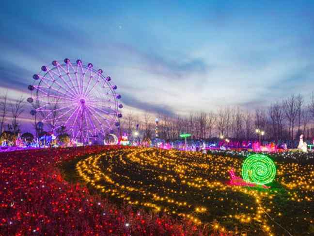 Wonderland of thousand lights 1