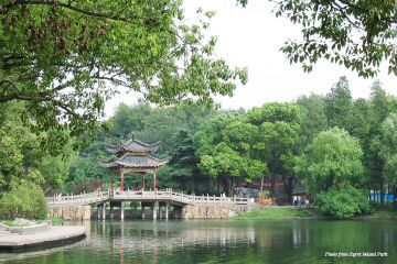Attractions in Nanjing Egret Island Park