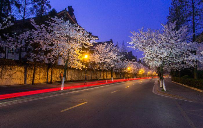 Nanjing Street