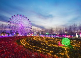 Wonderland of Thousand Lights