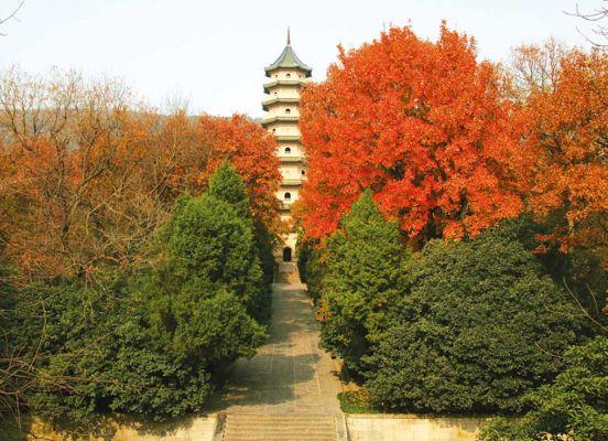 Linggu Park Nanjing Trip Attraction