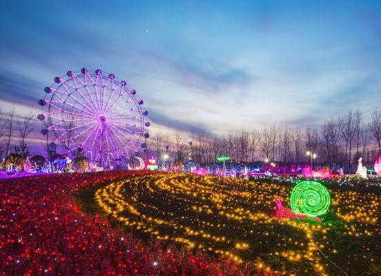 Wonderland of Thousand Lights Nanjing Trip News